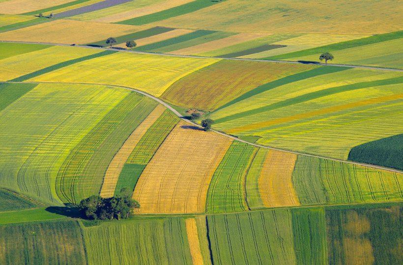 В Украине представили последствия закона о рынке земле №552-IX для агросектора