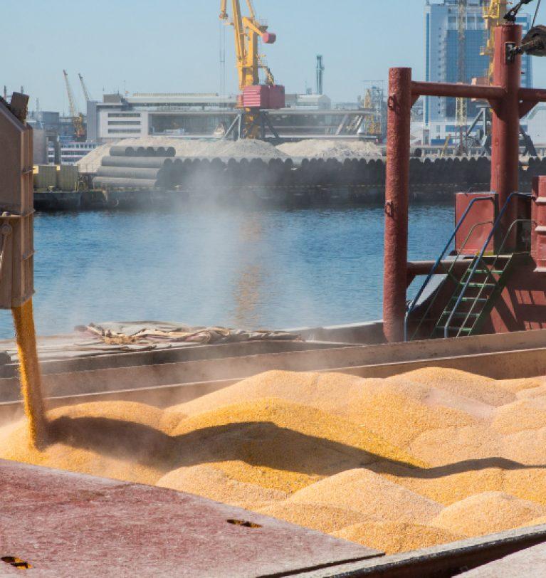 Морпорты снизили перевалку хлебных грузов