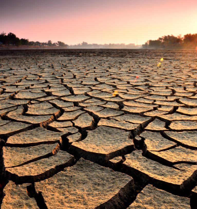 В Одесском регионе засуха принесла убытки в 6,5 млрд грн