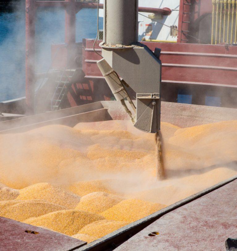 В украинских портах повысились цены на продовольственную пшеницу