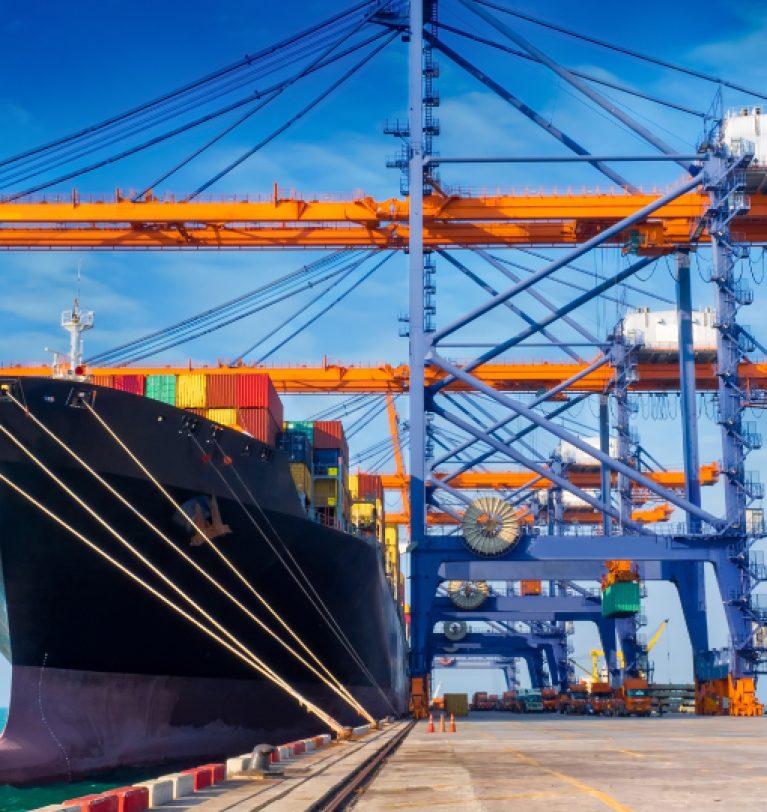 Украина отгрузила на экспорт более 14,5 млн т зерна
