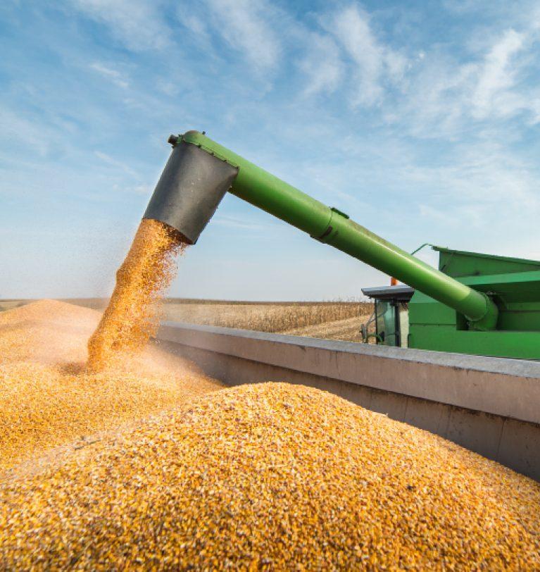 Евросоюз отменил пошлину на импорт зерна