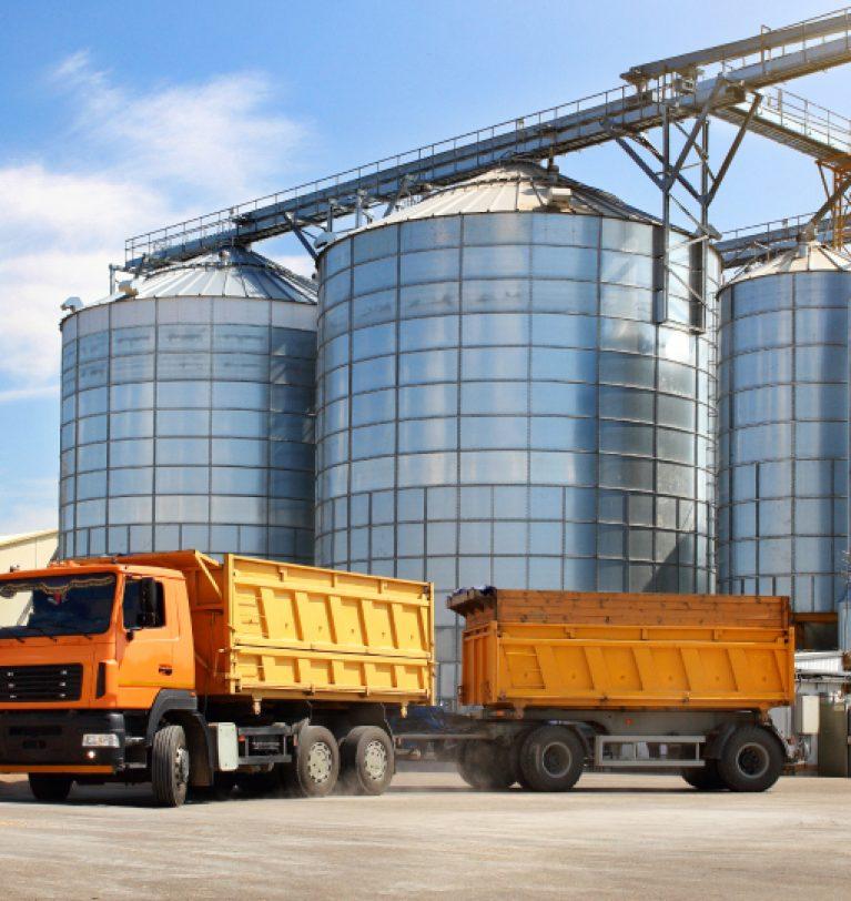 Украина экспортировала более 56 млн т зерна