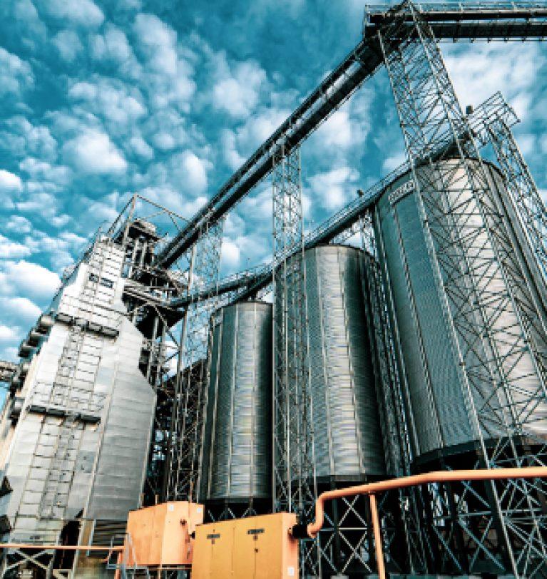 Элеватор «Зерно-Агро» бесплатно досушит кукурузу