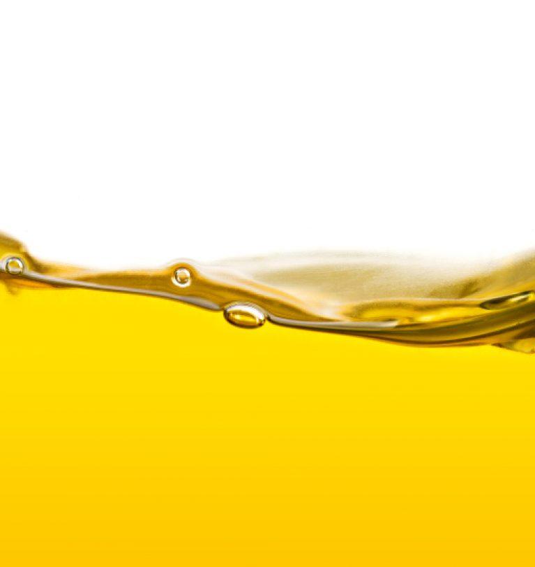 Выросли мировые цены на масличные