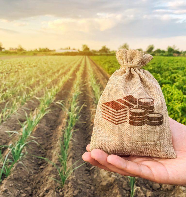 Фермеры Одесской области получили денежную компенсацию