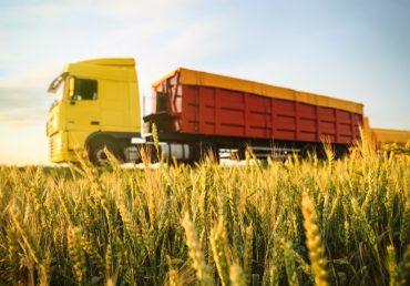 Почти 14 млн т зерна Украина экспортировала с начала сезона