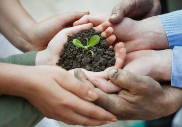 Представлены основные программы господдержки АПК на 2021-2023 годы