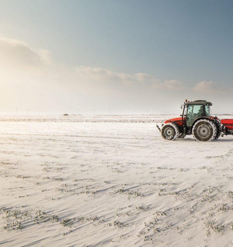 Украинские аграрии засеяли более 5 млн га озимыми
