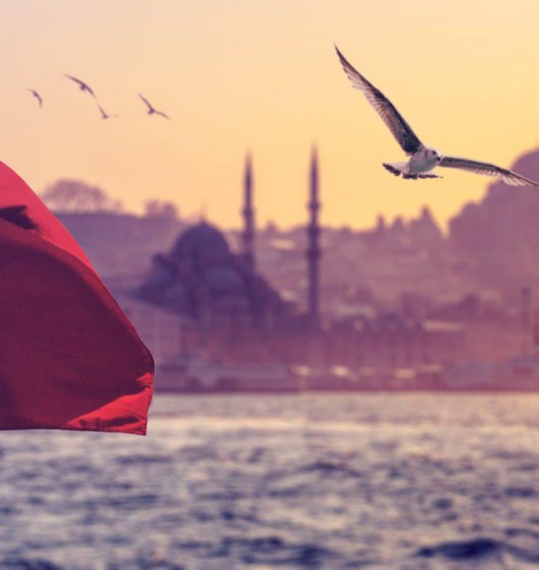 Турция обнулила пошлину на импорт зерна