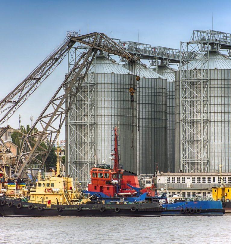 Реализация масличных в Украине уменьшилась на 17%