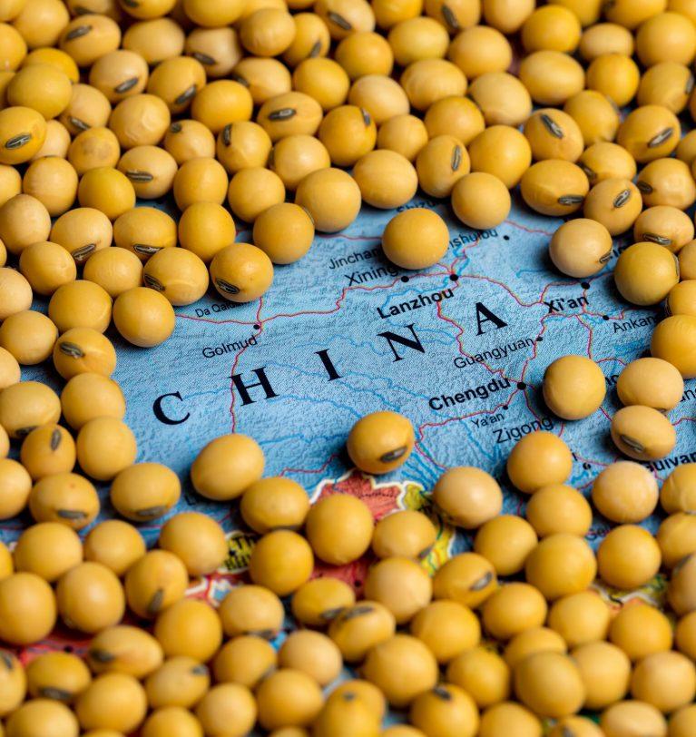 Импорт сои в Китай увеличился