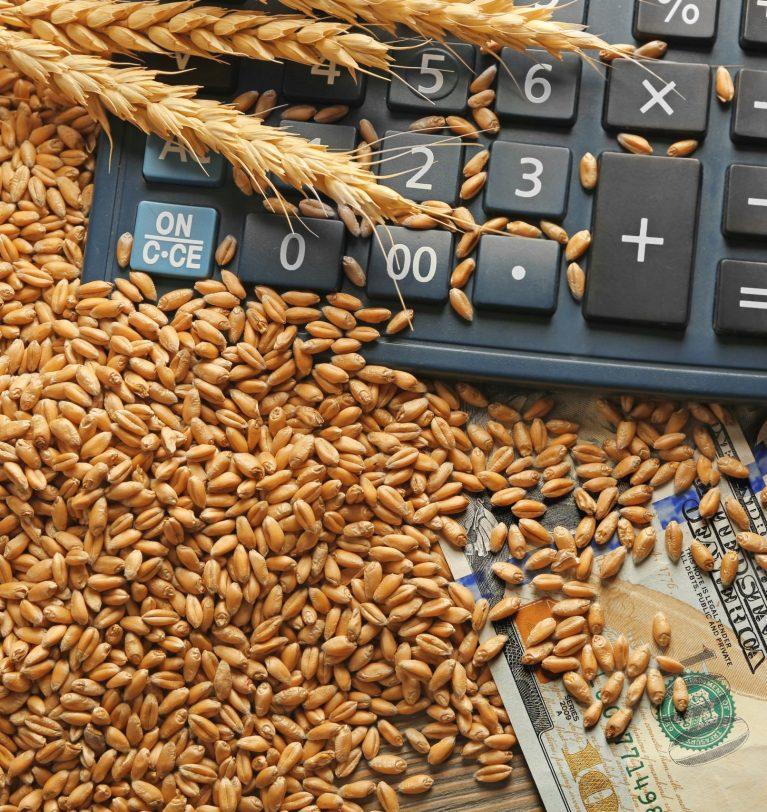 Экспорт зерновых снизился на 16%