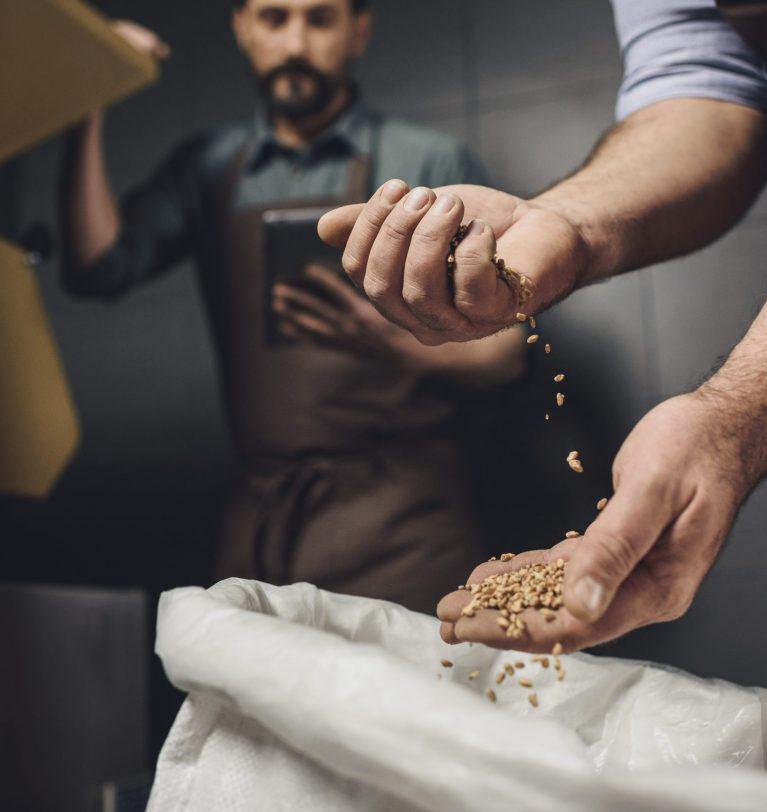 ГПЗКУ начинает осеннюю закупку зерна
