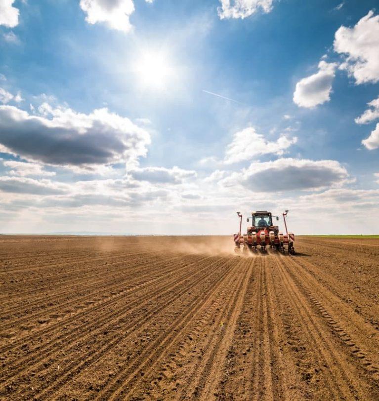 Украинские аграрии посеяли почти 8 млн га озимых