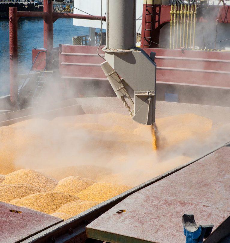 Перевалка кукурудзи в морпортах України  14% в минулому році