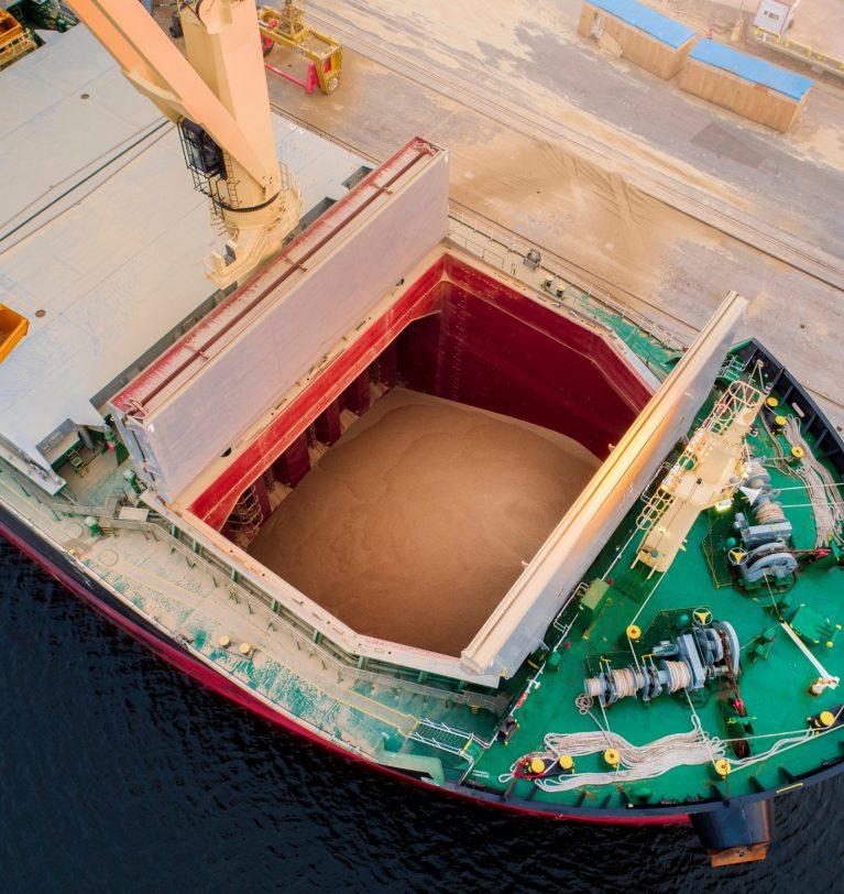 Експорт зернових впав на 20%