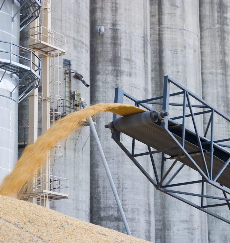Более 11 млн т кукурузы составил экспорт Украины с начала сезона