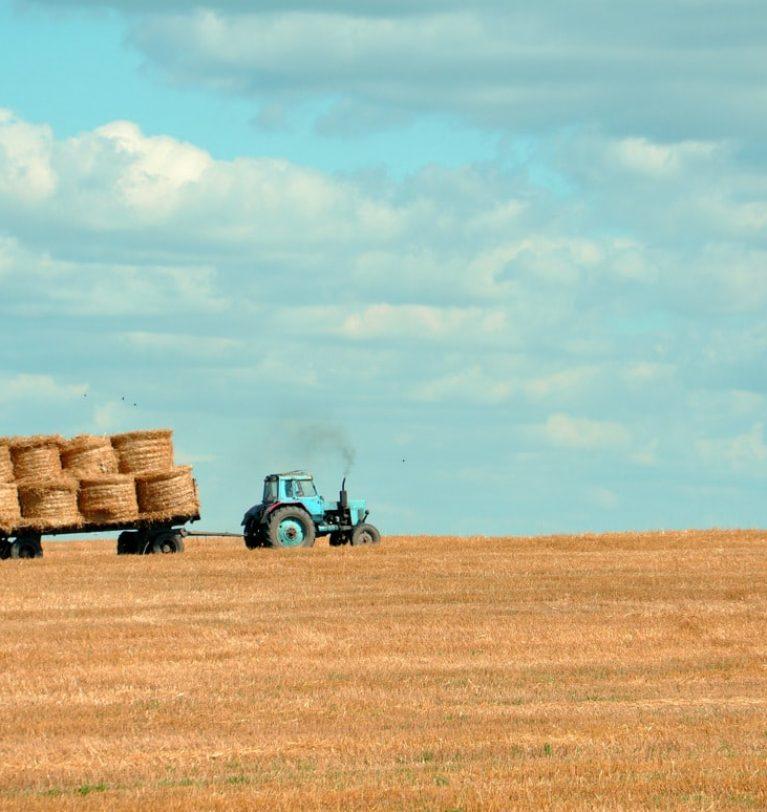 Луганский регион собирает рекордный урожай