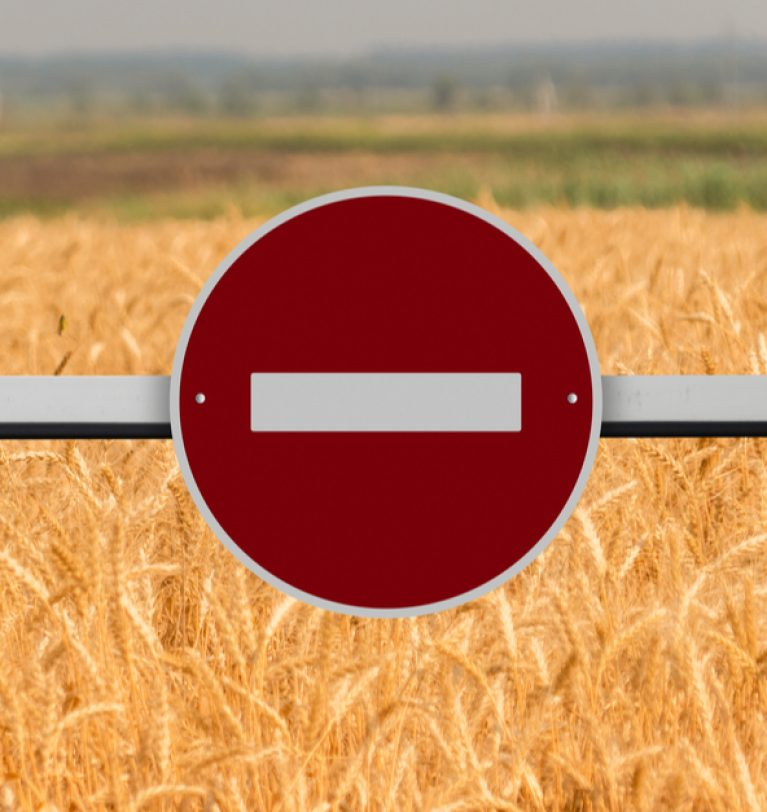 Херсонской области могут запретить экспортировать выращенное зерно
