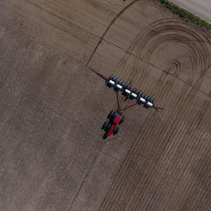 В Україні вже засіяно 20% ярих зернових і зернобобових