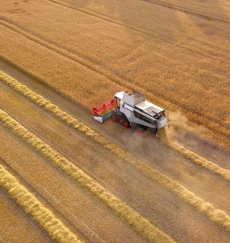 Первый миллион тонн зерновых нового урожая собран
