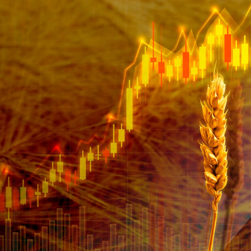 ТОП-5 областей-лідерів за обсягом врожаю пшениці 2021