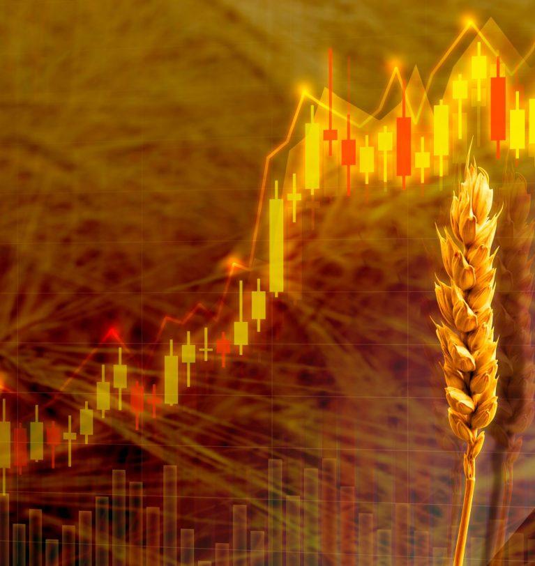 ТОП-5 областей-лидеров по объему урожая пшеницы 2021