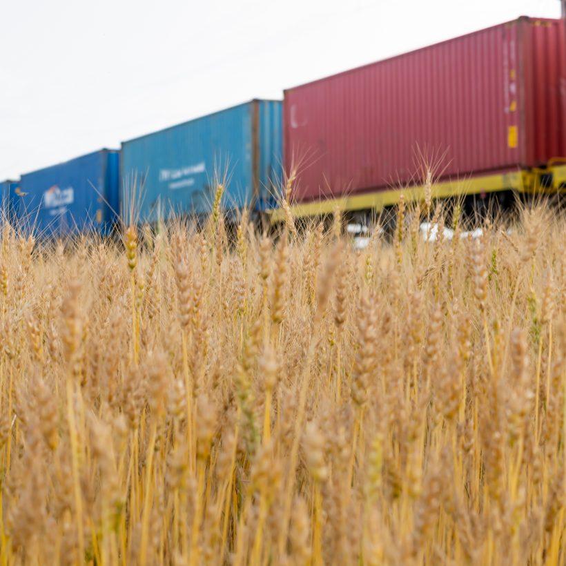 Обмежений пропуск вантажів на казахстансько-китайському кордоні