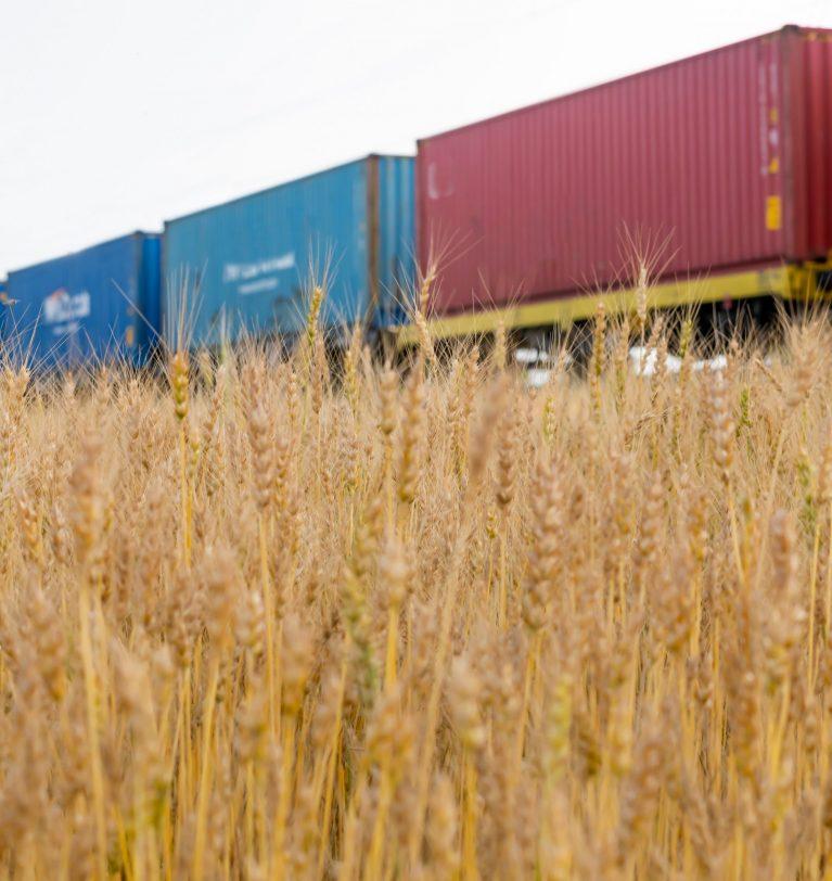 Ограничен пропуск грузов на казахстанско-китайской границе