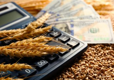 Зросли показники валового збору ранніх зернових Дніпропетровщини