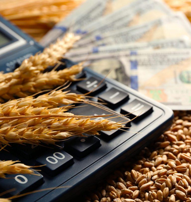 Выросли показатели валового сбора ранних зерновых Днепропетровщины